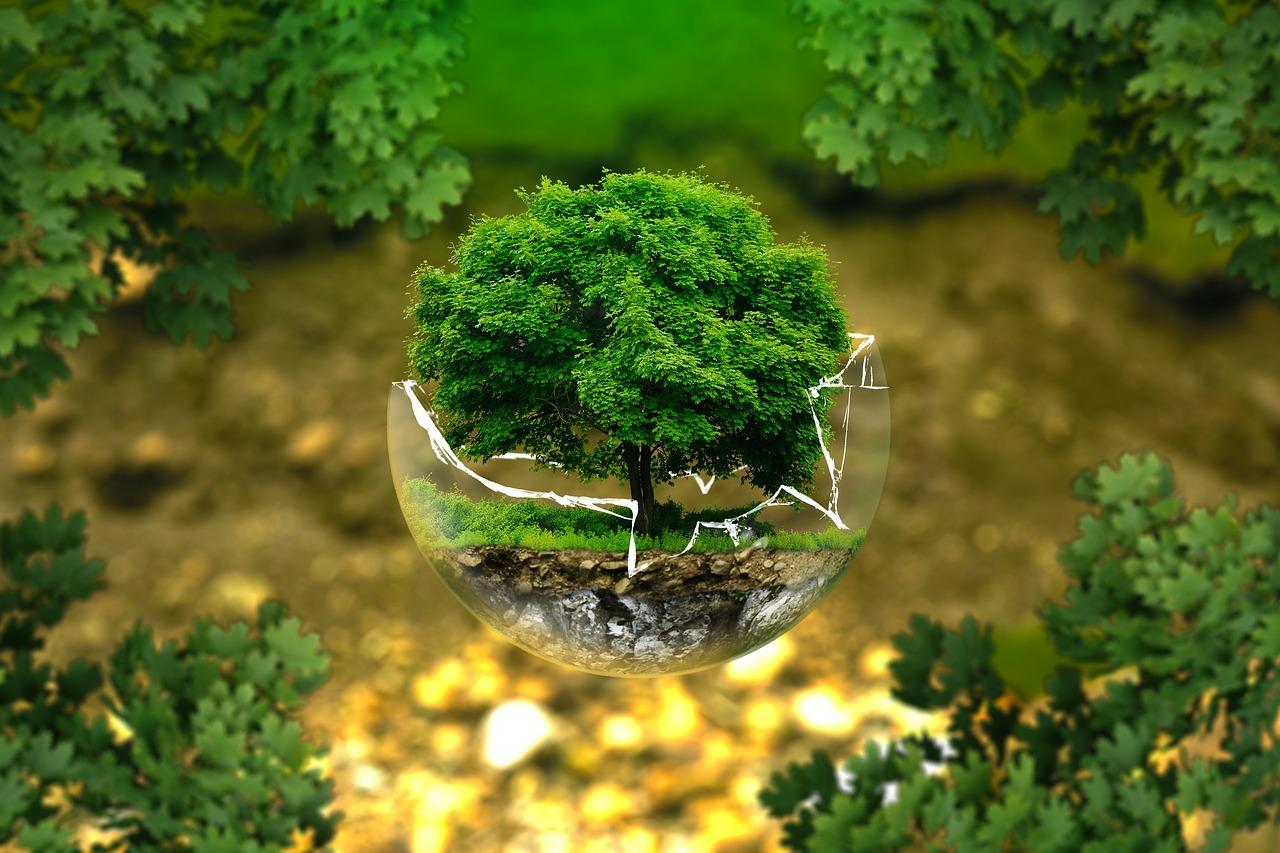 Coop och den ekologiska propagandan