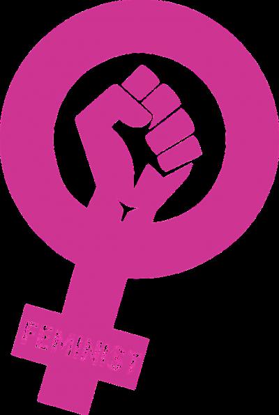 Om feminister och deras ständigt ökande förvirring